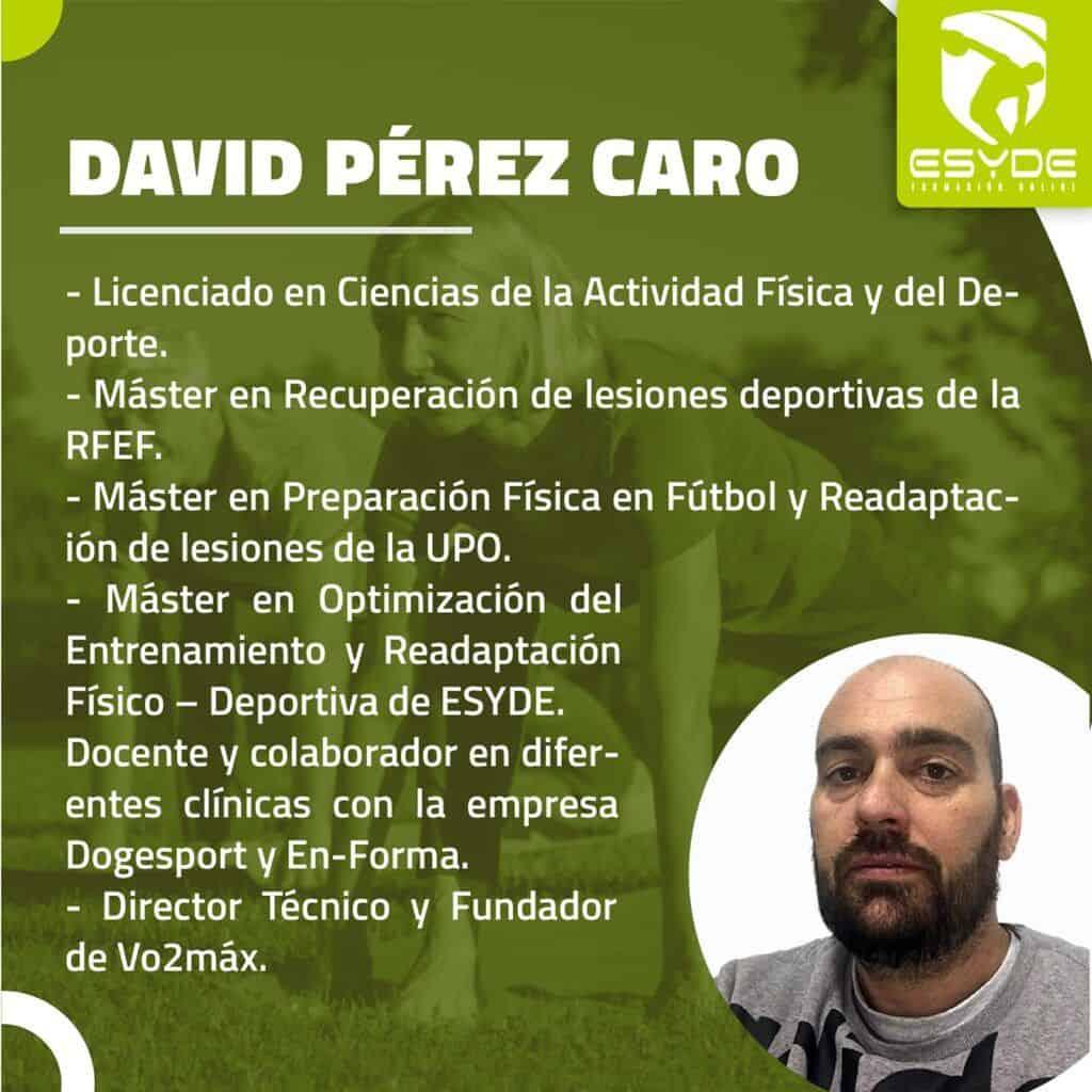DAVID PEREZ CARO Entrenamiento funcional para adultos mayores ESYDE