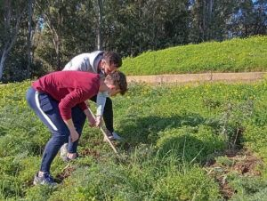 alumnos de TECO participan en actividades de reforestación en Huelva